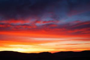 Is the sun setting on Flash?